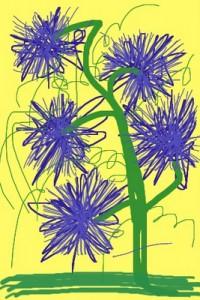flowers & plants (6)