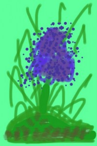 flowers & plants (7)